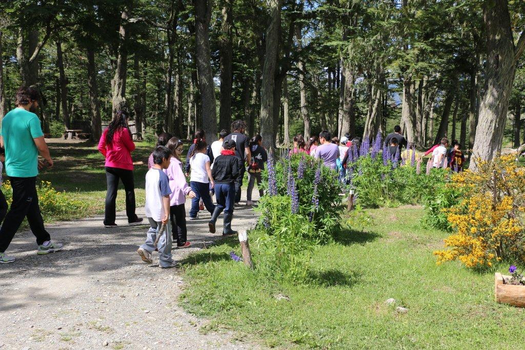 Colonias De Vacaciones Campamentos Pileta Y Deportes Extremos En